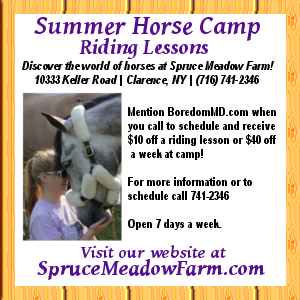 Spruce Meadow Horse Farm- Riding Lessons-Date Lesson for Couples-Horse Camp For Kids- Clarence, NY
