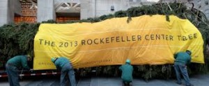 christmas tree at rockefeller center nyc