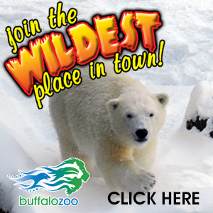 Become A Member of the Buffalo Zoo For Only $40 – Come See the Polar Bears and Rainforest