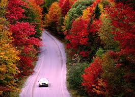 Fall Foliage Driving Routes Near Boston Ma