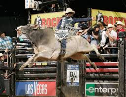 Bull Riding At Madison Square Garden January 6 8 2017 Nyc