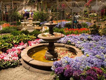2017 chicago flower and garden show march 18 26 2017 for Chicago flower and garden show