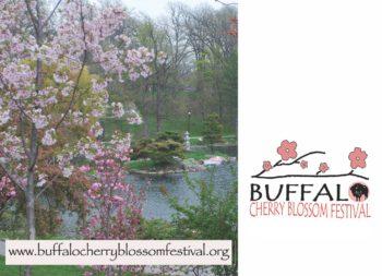 2017 buffalo cherry blossom festival april 29 to may 6 2017 buffalo ny. Black Bedroom Furniture Sets. Home Design Ideas